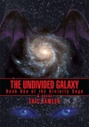 The Undivided Galaxy
