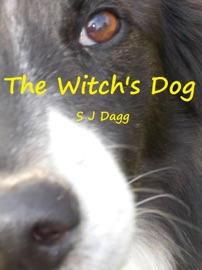 The Witch S Dog