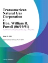 Transamerican Natural Gas Corporation V Hon William R Powell 061991