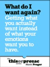 What Do I Want Again Getting What You Actually Want Instead Of What Your Emotions Want You To Have