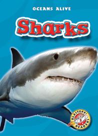 Sharks - Colleen Sexton book summary