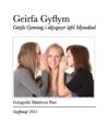 Geirfa Gyflym Mynediad