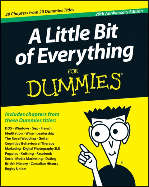 A Little Bit of Everything For Dummies - John Wiley & Sons, Inc. book cover