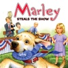 Marley Marley Steals The Show