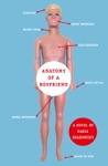 Anatomy Of A Boyfriend