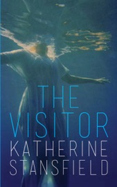 Download The Visitor
