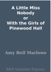 A Little Miss Nobody Or With The Girls Of Pinewood Hall