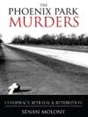 The Phoenix Park Murders Political Assassination In Dublin