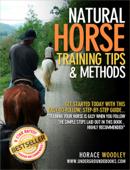 Natural Horse Training Tips & Methods