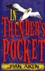 In Thunder's Pocket