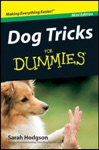 Dog Tricks For Dummies  Mini Edition