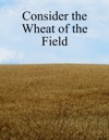 Consider The Wheat Of The Field