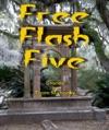 Free Flash Five