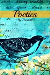 Poetics In Plain And Simple English