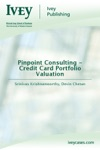 Pinpoint Consulting - Credit Card Portfolio Valuation
