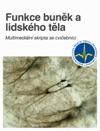 Funkce Bunk A Lidskho Tla