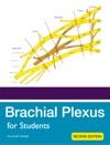 Brachial Plexus For Students