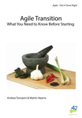 Agile Transition - What you Need to Know Before Starting