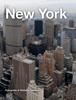 Stefano Gambini - New York artwork