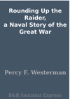 Rounding Up The Raider A Naval Story Of The Great War