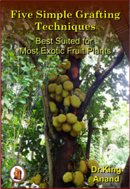 Five Simple Grafting Techniques Best Suited for Most Exotic Fruit Plants