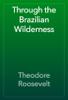 Theodore Roosevelt - Through the Brazilian Wilderness  artwork