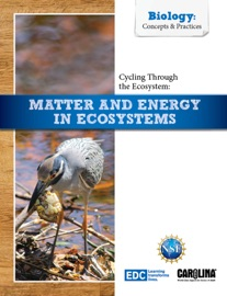 Cycling Through The Ecosystem Matter And Energy In Ecosystems