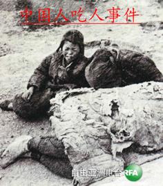 中国人吃人事件 book