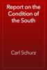Carl Schurz - Report on the Condition of the South artwork