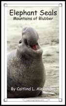 Elephant Seals: Mountains Of Blubber