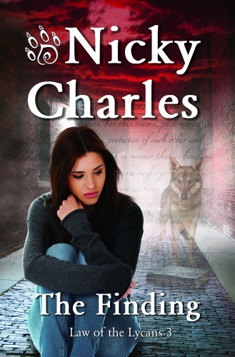 The Finding - Nicky Charles - Nicky Charles