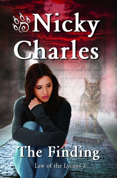 The Finding - Nicky Charles book cover