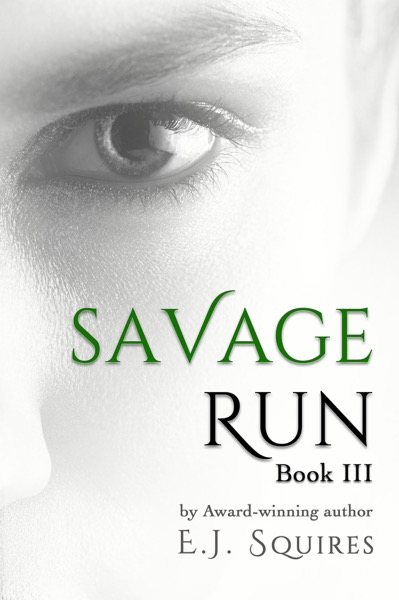 Savage Run 3