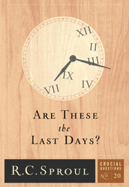 Are These the Last Days? book