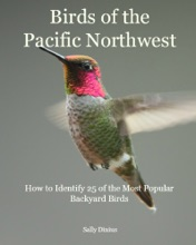 Birds of the Pacific Northwest: How to Identify 25 of the Most Popular Backyard Birds