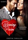 Burning Passion Erotik-Thriller