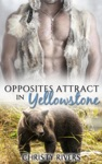Opposites Attract In Yellowstone