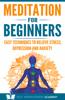 Scott Henderson - Meditation for Beginners artwork