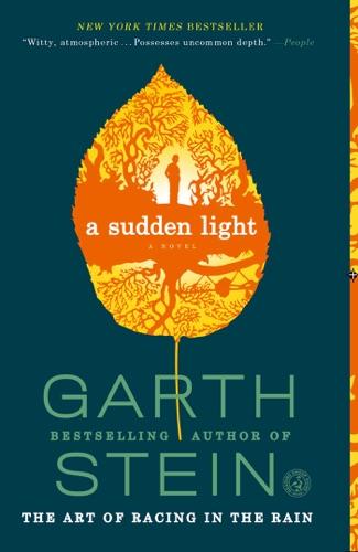 Garth Stein - A Sudden Light