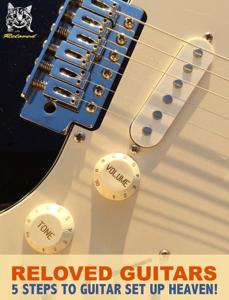 Reloved Guitars Copertina del libro