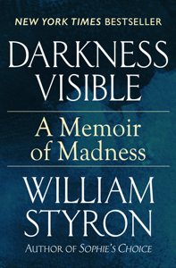 Darkness Visible Libro Cover