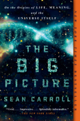 The Big Picture Book Cover