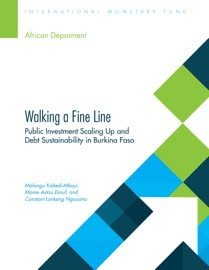 Walking A Fine Line Public Investment Scaling Up And Debt Sustainability In Burkina Faso
