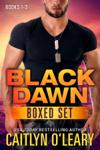 NAVY SEAL BOX SET - Black Dawn Books 1-3