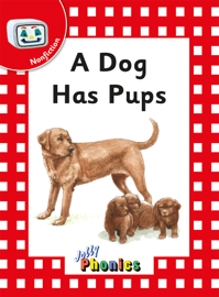 A Dog has Pups
