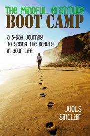 The Mindful Gratitude Boot Camp A 5 Day Journey To Seeing The Beauty In Your Life