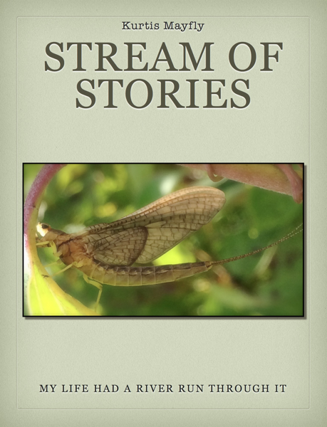 Stream of Stories