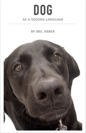 Dog As A Second Language