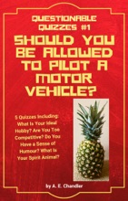 Should You Be Allowed to Pilot a Motor Vehicle? 5 Quizzes Including: What Is Your Ideal Hobby? Are You Too Competitive? Do You Have a Sense of Humour? What Is Your Spirit Animal?