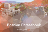Bosnian Light Phrasebook